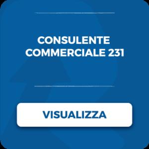 lavora con noi consulente commerciale_231